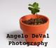 Angelo DeVal Photography :: Wallart and Decor. Algarve
