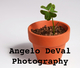 Angelo DeVal Photography :: Wallart and Decor. Algarve