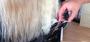 Cortes de cabelo - Queijas, Oeiras - Michele Encke