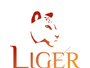 Liger Tourism & Consulting