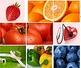 FORMAÇÃO AVANÇADA EM NUTRIÇÃO CLÍNICA
